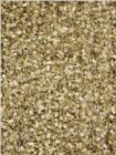 Chandra Ensign ENS16602 Gold